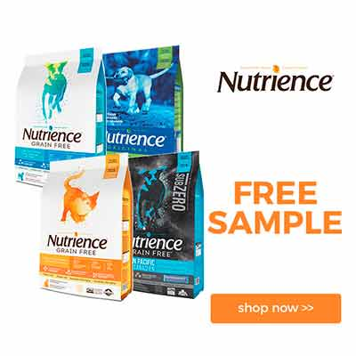 Бесплатный корм для собак и кошек Nutrience
