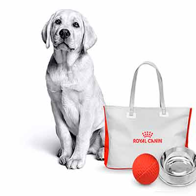 Призы от Royal Canin