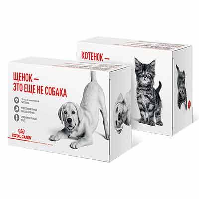 Бесплатный корм для собак и кошек