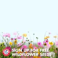 Бесплатная открытка с семенами цветов ARM & HAMMER