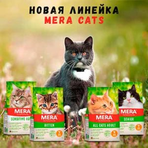 Бесплатный Корм для Кошек MERA Cats