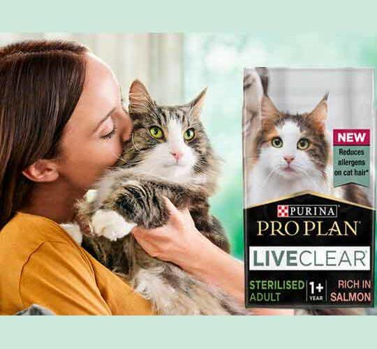 Бесплатный Корм для Кошек Pro Plan LiveClear